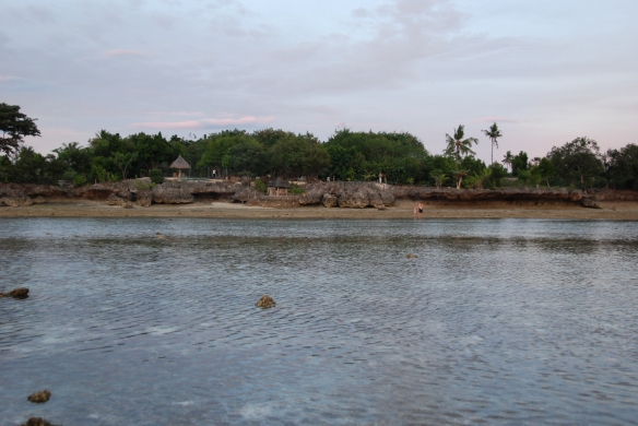 DSC_0425_Sea_Turtle_House_Beach