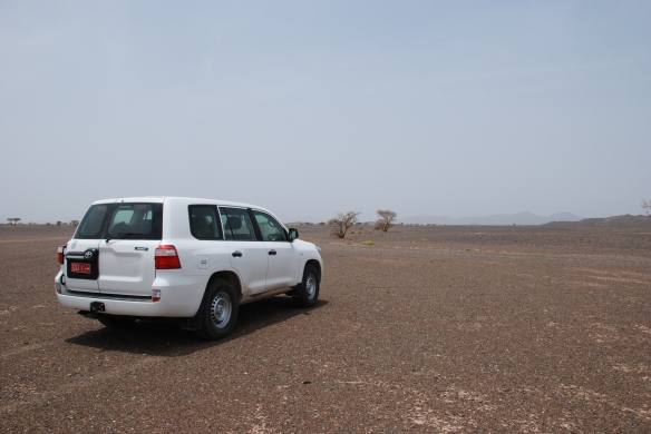 DSC_6577_Ibra_to_Nizwa_Lizq_Car_desert_of_stone